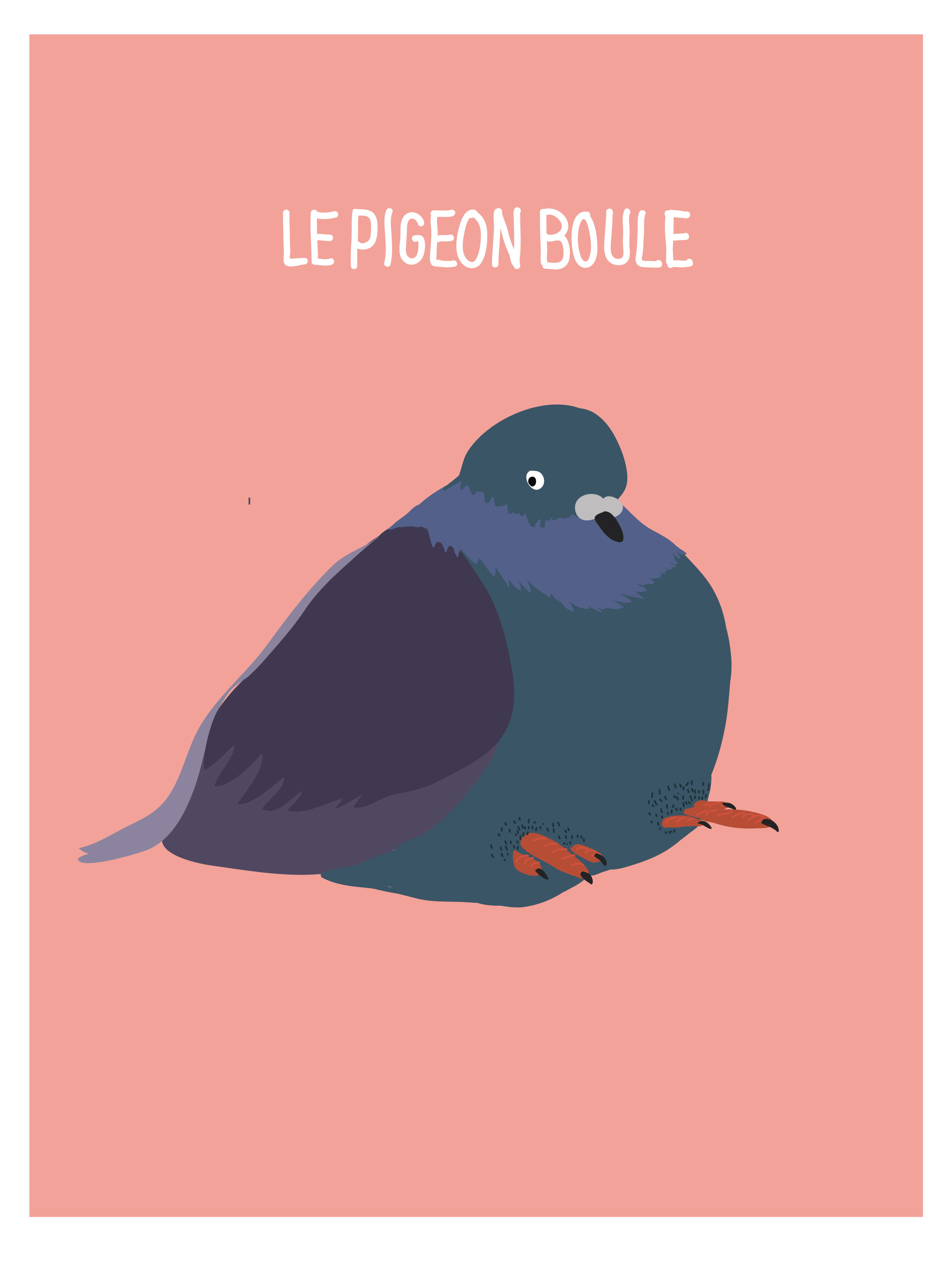 le pigeon -maw